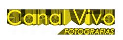 Canalvivo | Blog